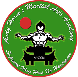 Andy Horne's Martial Arts Academy